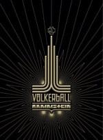 Icon Völkerball