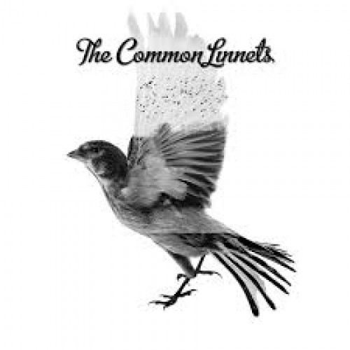 Icon The Common Linnets