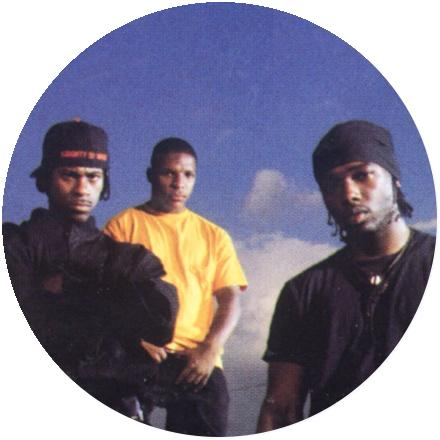 Icon Naughty By Nature