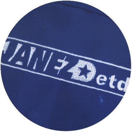 Icon Janez Detd