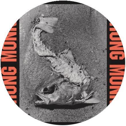 Icon Sprung Monkey